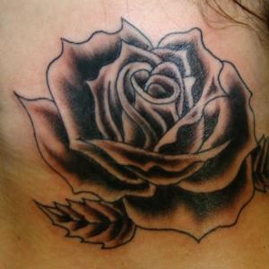 Black-Rose-Neck-2013